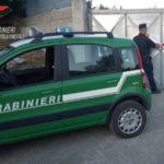 Isola ecologica comunale sequestrata a Roseto Capo Spulico