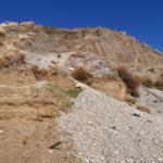 """Rifiuti: Tansi: """"riapertura discarica San Lazzaro è una bomba ecologica"""""""
