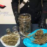 Droga: 34enne arrestato ad Amaroni per detenzione e spaccio