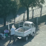 Catanzaro: abbandono illecito di rifiuti, nuove multe con fototrappole