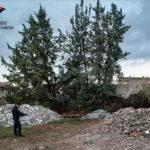 Rifiuti: materiale smaltito illegalmente, 2 denunce nel Cosentino