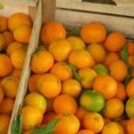 Lamezia: Polizia locale sequestra oltre un quintale di frutta