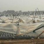 Maltempo: tromba d'aria a Cariati, distrutti 6 ettari di serre