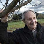 "Lamezia: torna la campagna Cei ""Insieme ai sacerdoti"""