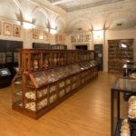 Coronavirus: sospesa domenica gratuita musei marzo