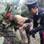 Armi: fucile e munizioni sequestrati nella Locride
