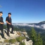 Incendi: 5 indagati per disastro ambientale nel Cosentino