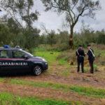 Controlli Carabinieri nel Reggino, sanzioni e 4 denunce