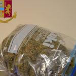 Droga: marijuana in un magazzino, un arresto a Lamezia Terme