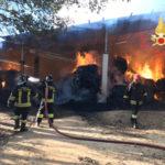 Incendi: a fuoco nel comune di Borgia una stalla
