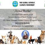 Lamezia, il 17 gennaio al Santuario di Dipodi vescovo Schillaci benedirà animali