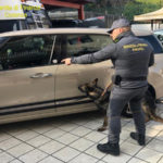 Operazione antidroga a Rossano, un arresto