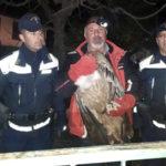 Polizia Provinciale recupera maestoso avvoltoio Grifone a Cirella