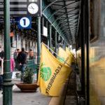 Ambiente: Riparte da Lamezia Terme il Treno Verde