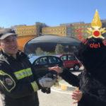 Catanzaro: Vigili Fuoco recuperano volatile a Germaneto