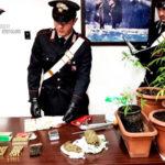 Armi e droga, due arresti dei Carabinieri nel Reggino