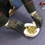 Droga: Denunciato imprenditore agricolo di Girifalco