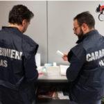 Controlli Carabinieri ambulatorio veterinario a Maida, una denuncia
