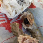 Carabinieri trovano esplosivo, un arresto nel Reggino