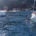 Ambiente: bando Regione per tutela ecosistemi marini