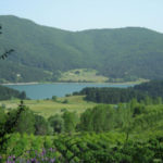 Coronavirus: Coldiretti Calabria, bene via libera a forestazione