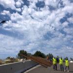 Anas: riavviata messa in sicurezza strada Joppolo-Coccorino