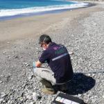 Arpacal: al via la campagna di balneazione, online i report