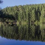 Giornata Europea dei Parchi: #ParksForHealth, Parchi per la salute