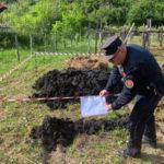 Rifiuti: smaltimento illegale, due denunce nel Cosentino
