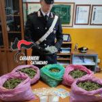 Catanzaro, a spasso pieni di droga: 2 arresti dei carabinieri