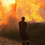 Lotta incendi boschivi: convenzione tra Vigili del Fuoco e Calabria Verde