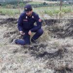 Incendi: provoca rogo per ripulire terreno, denunciato