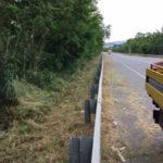 Anas: prosegue manutenzione verde tra province di Vibo e Catanzaro