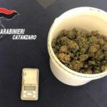 Droga: venticinquenne catanzarese arrestato dai carabinieri