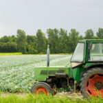 Agricoltura: Flai Cgill Fai Cisl e Uila Uil su  Cplday