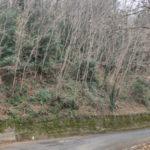 Anas: al via gli interventi di protezione dei versanti rocciosi sulla SS182