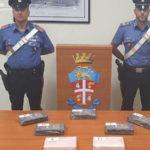 Arrestato dai Carabinieri insospettabile corriere , trasportava cocaina