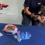 Droga: aveva 198 gr di marijuana a casa, arrestato