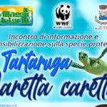 La tartaruga Caretta caretta al Villaggio del Golfo
