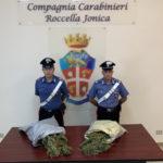 Droga: arrestati un allevatore e un commerciante nel reggino