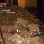 Gioia Tauro: ancora arresti per produzione di stupefacente