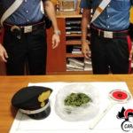 Contrasto allo spaccio di stupefacenti in area sud, ancora un arresto