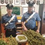 Contrasto allo spaccio di stupefacenti: un arresto