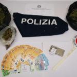 Catanzaro: Individuato market marijuana, Polizia arresta pregiudicato