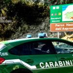 Dispersi parco d'Aspromonte, ritrovati dai carabinieri forestali