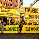 Coldiretti Calabria, cinghiali questione irrisolta