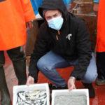 Pesca della sardella, la Regione dà il via alla campagna sperimentale