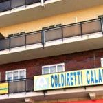 Calabria, ventitrè uffici Coldiretti a disposizione per la campagna di vaccinazioni