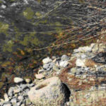 Recuperato nel fiume Savuto manufatto granitico di 300 kg del II secolo a.C.