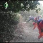 """Emergenza incendi, il commissario straordinario di """"Calabria Verde"""""""
